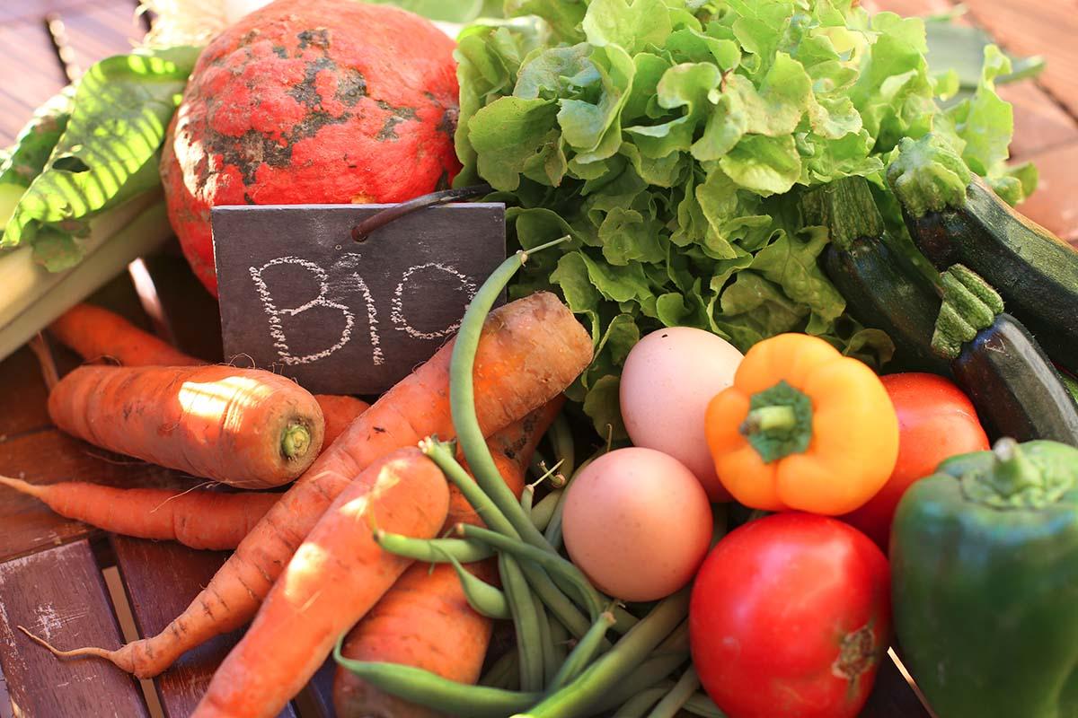 Zdrowe gotowanie z Bio produktów
