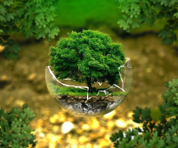 Ekologiczne kubki na wyjazd i nie tylko